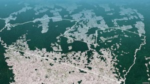 This aerial photograph shows the boundaries of the Awá Indigenous Land, one of four protected areas where members of the tribe live. More than 30 percent of the reserve has been invaded by loggers, ranchers and settlers. Credit: Survival